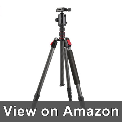 BC Master Camera Tripod Reviews